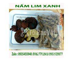 Bán nấm lim xanh hỗ trợ điều trị bệnh