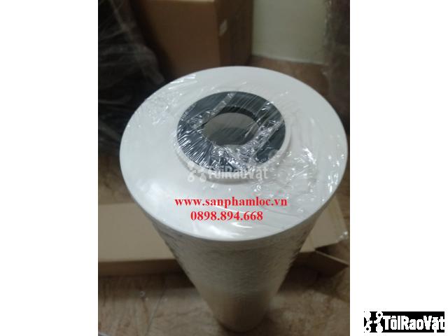 Lõi lọc than hoạt tính BB 20 inch Pentek lọc nước giếng khoan - 2/3