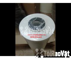 Lõi lọc than hoạt tính BB 20 inch Pentek lọc nước giếng khoan - Hình ảnh 2/3