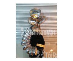 Bộ gậy golf Honma HT-02 5 sao chính hãng Honma - Hình ảnh 1/2