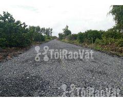 Cần bán gấp lô đất 500m2 giá 750 triệu tại Bến Lức - Hình ảnh 2/3
