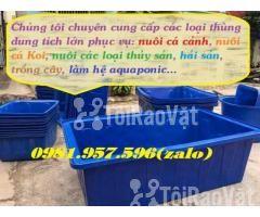 Thùng nhựa nuôi hải sản,thùng nuôi cá koi, thùng nuôi cá cảnh - Hình ảnh 2/3