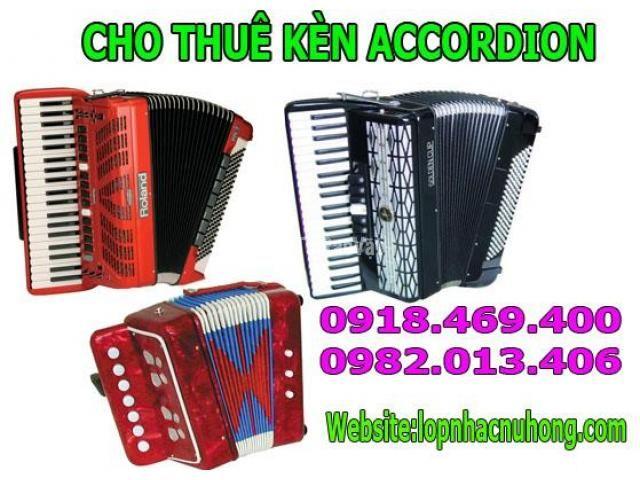 Cho thuê kèn accordion giá rẻ thủ tục nhanh gọn lẹ - 2/3