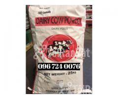 BỘT SỮA DAIRY COW POWDER