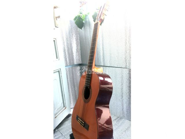 Đàn guitar classic Suzuki cổ. - 5/6