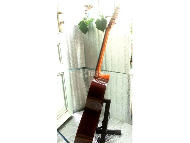 Đàn guitar classic Suzuki cổ. - 6/6