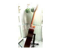 Đàn guitar classic Suzuki cổ. - Hình ảnh 6/6