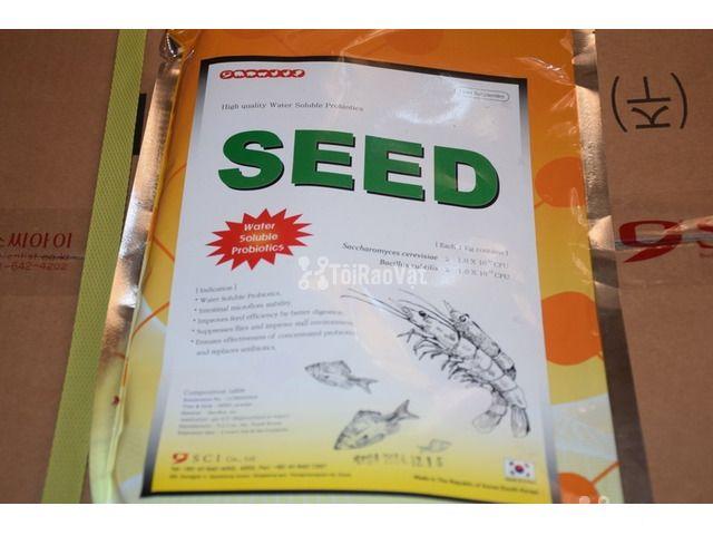 Men Seed men vi sinh đường ruột, ngừa phân trắng trên tôm - 1/3