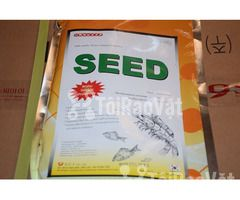 Men Seed men vi sinh đường ruột, ngừa phân trắng trên tôm - Hình ảnh 1/3