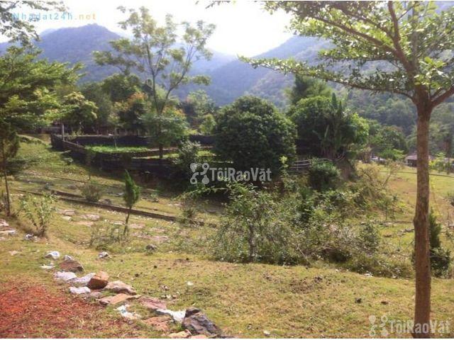 Bán đất trang trại, nghỉ dưỡng tại xã Kim Bình, huyện Kim Bôi - 1/1