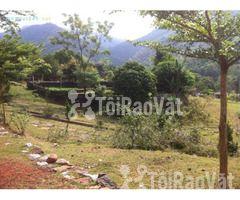Bán đất trang trại, nghỉ dưỡng tại xã Kim Bình, huyện Kim Bôi