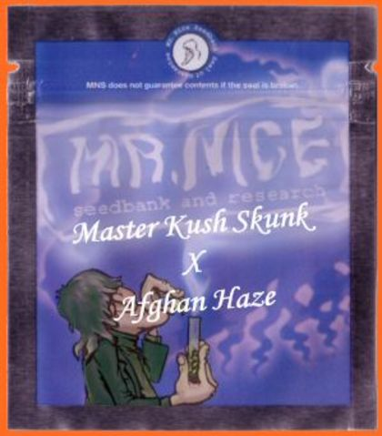 Mostly Indica: Master Kaze   (Master Kush Skunk X Afghan Haze)
