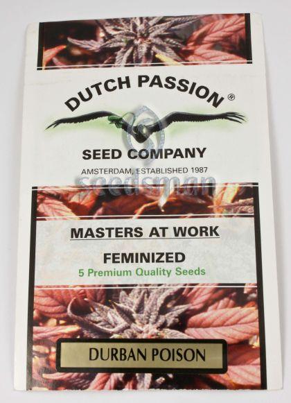 Sativa: Durban Poison