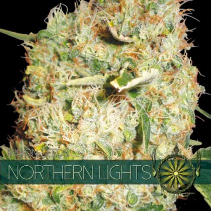 Indica: Northern Lights