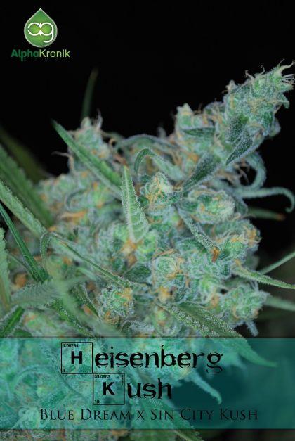 Mostly Sativa: Heisenberg Kush