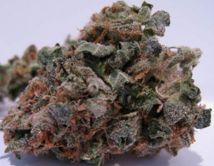 Featured Image of 707 Headband