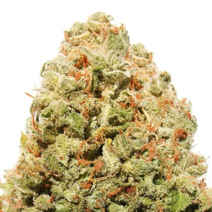 Mostly Indica: Strawberry Cake