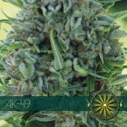 Featured Image of Ak-49