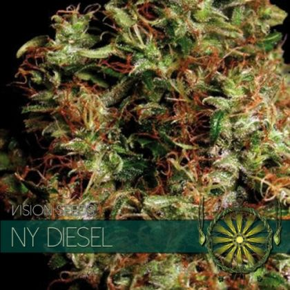 Featured Image of Ny Diesel