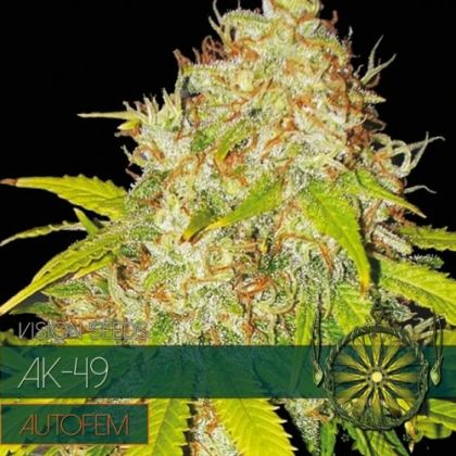 Featured Image of Ak-49 Auto