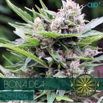 Mostly Indica: Bona Dea Cdb+