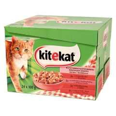 Kissanruoka 24x100g Seikkailijan sekoitus