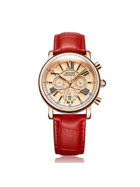 JEDIR Brand Antique Roman Numerals Watch
