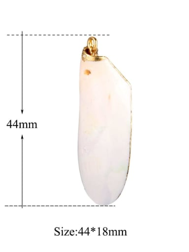 1 Multicolor Shell Irregular Charm