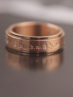 Rose Gold Plated Fashion Titanium Ring