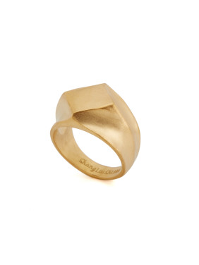 Gold Square Youself ! Gold Plated Titanium  Band Ring
