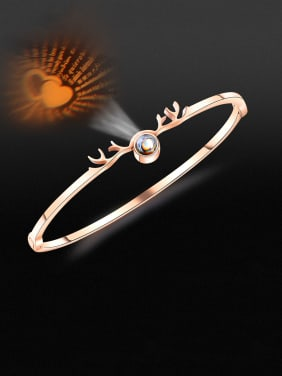 Stainless Steel With Rose Gold Plated Simplistic Irregular Bangles