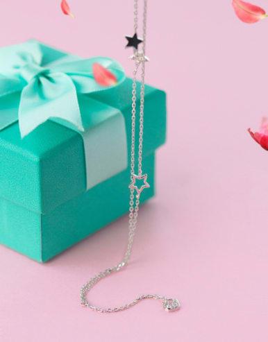 S925 Silver Elegant Swan Star Zircon Double Lines Bracelet