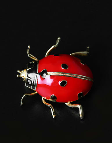 Color Enamel Insect Personality Brooch