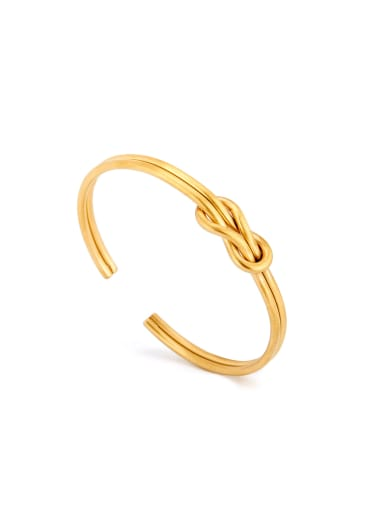 Model No DW0102 Fringe Bangle with Gold Plated Titanium