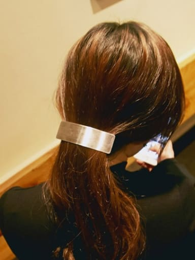 Titanium With Gold Plated Simplistic Geometric Barrettes & Clips