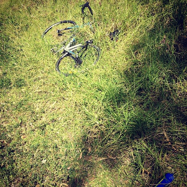 Bike in the grass