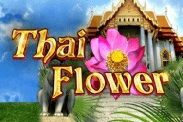 Free Thai Flower Slot Game Play Casino Slot Machines