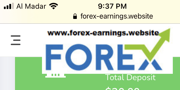 Forex earnings investment