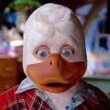 sir-quacks-a-lot