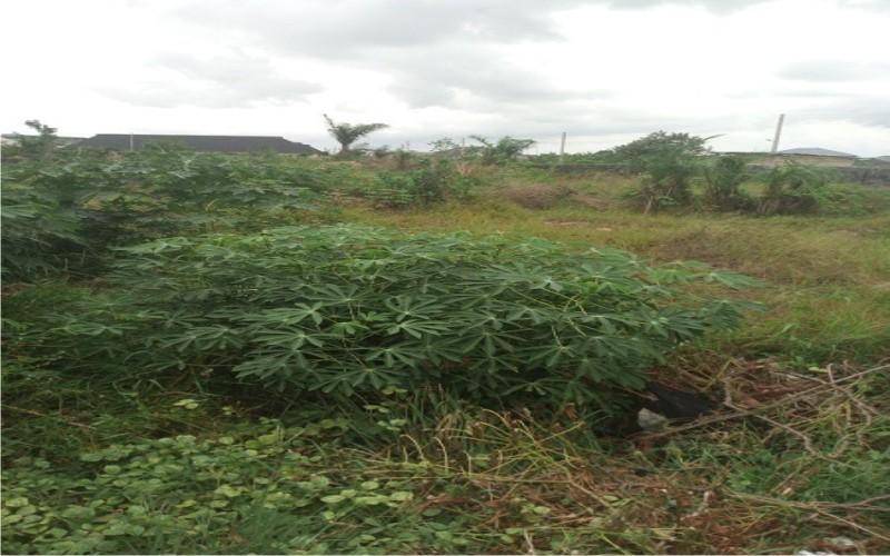 A gazetted dry land at Eastamber estate Abijo GRA, Ibeju-Lekki for sale
