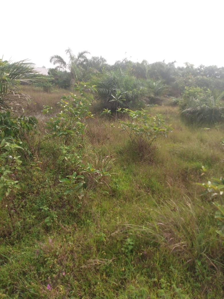 Plot of Land along Lekki Epe Expressway for sale