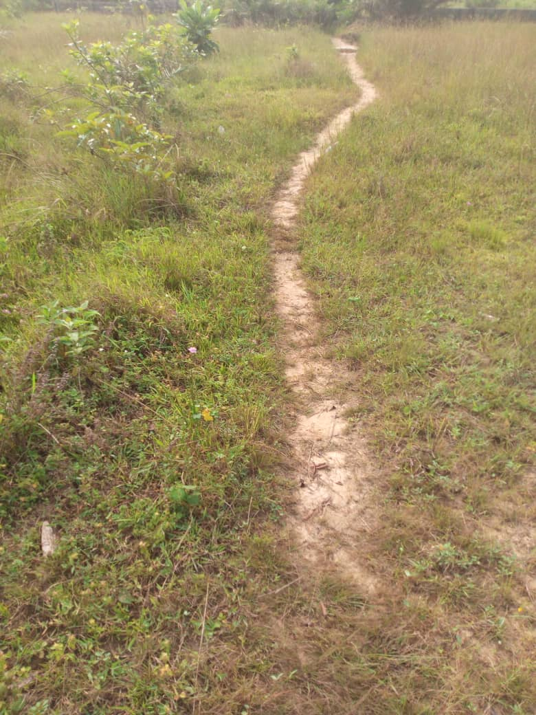 A fenced plot of mixed development land at Ikate For Sale