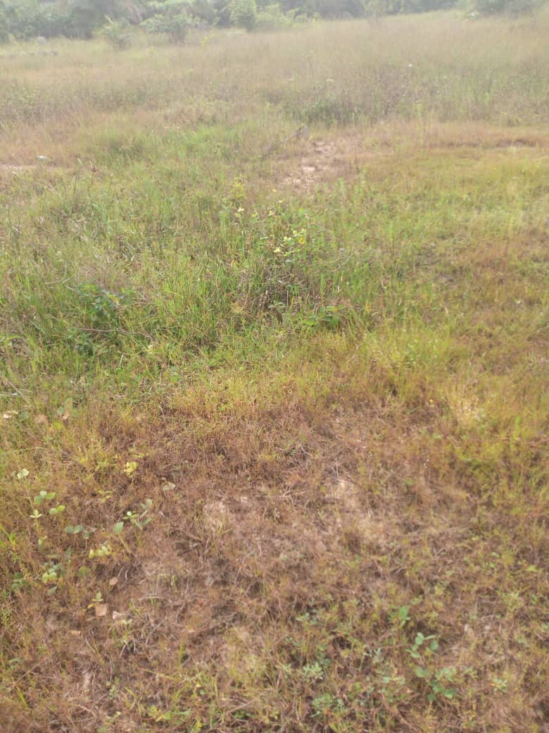 land on Admiralty Road Lekki Phase 1 for sale
