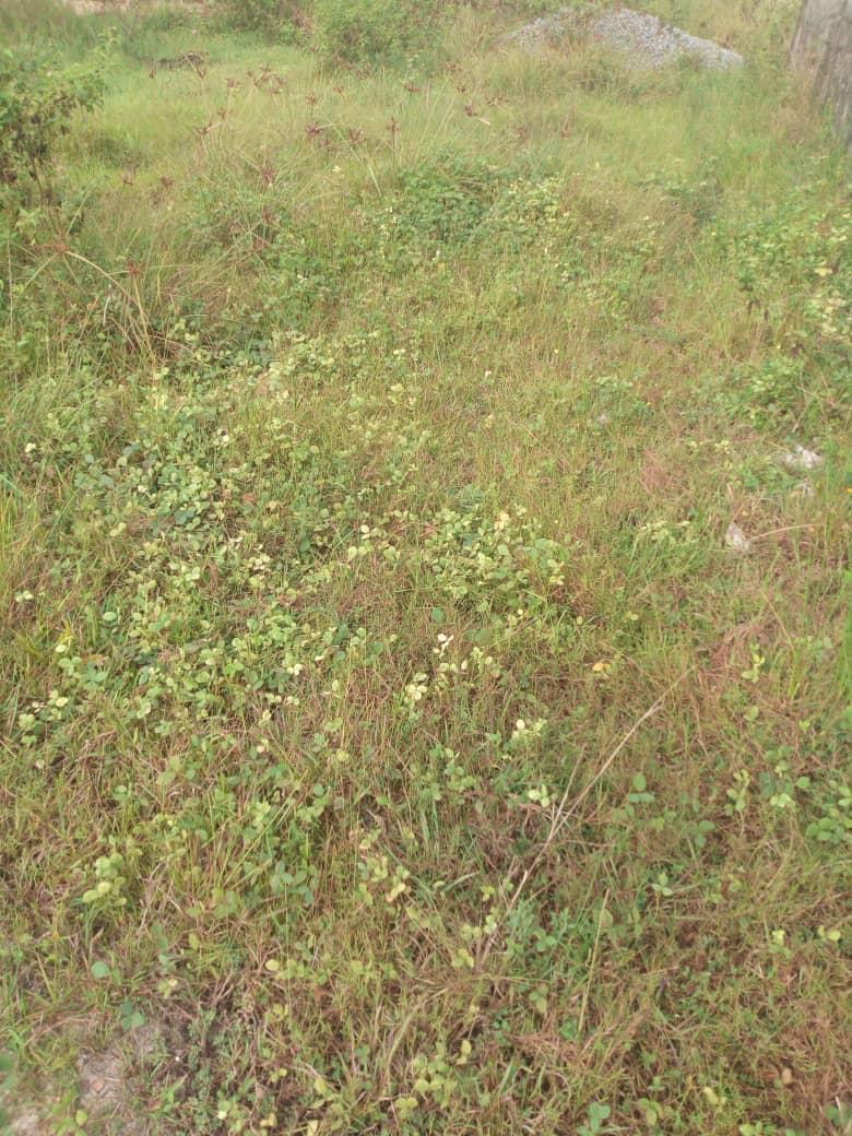 A Dry Land At Oniru Lekki Beside Goshen Estate Lagos for Joint Venture development