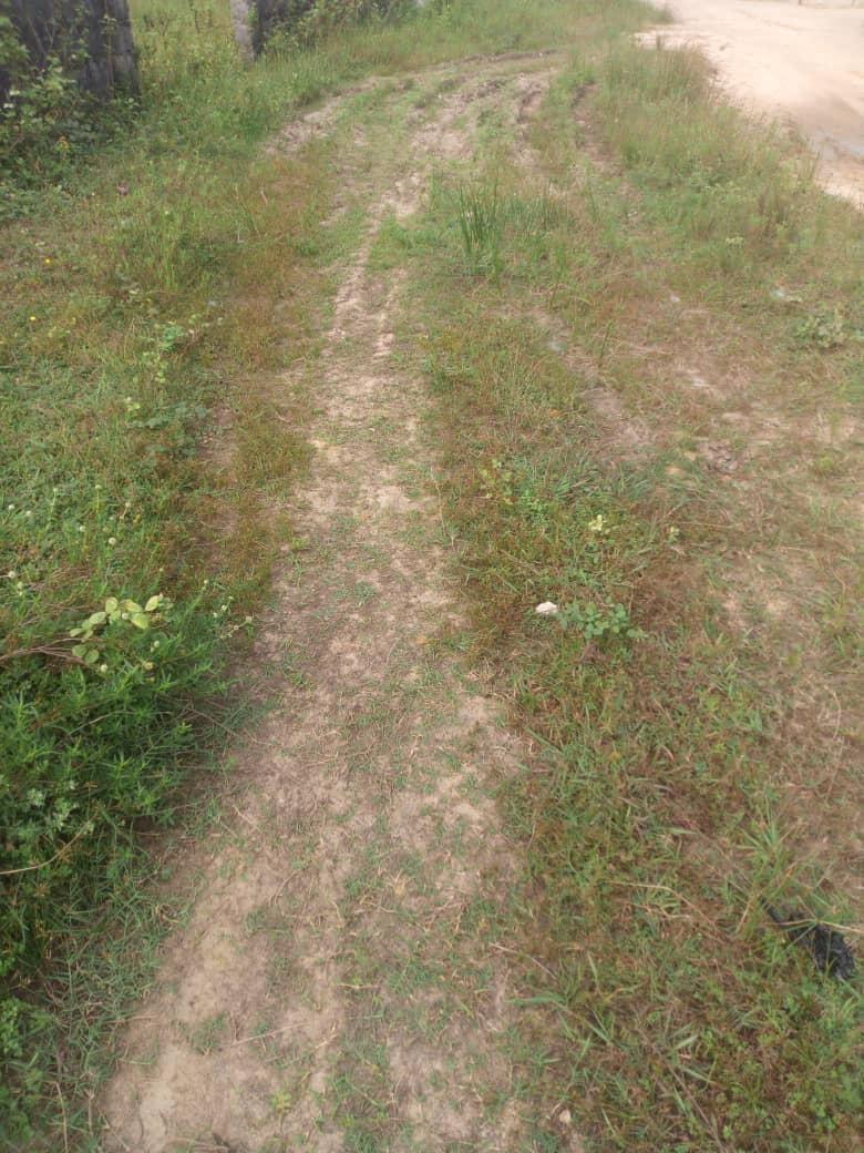 18 hectares of land at Ogombo road for sale