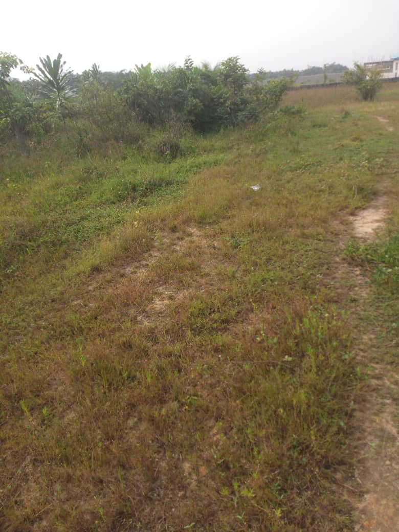 15 Plots (1 Hectare) of Land at Ogombo road for sale