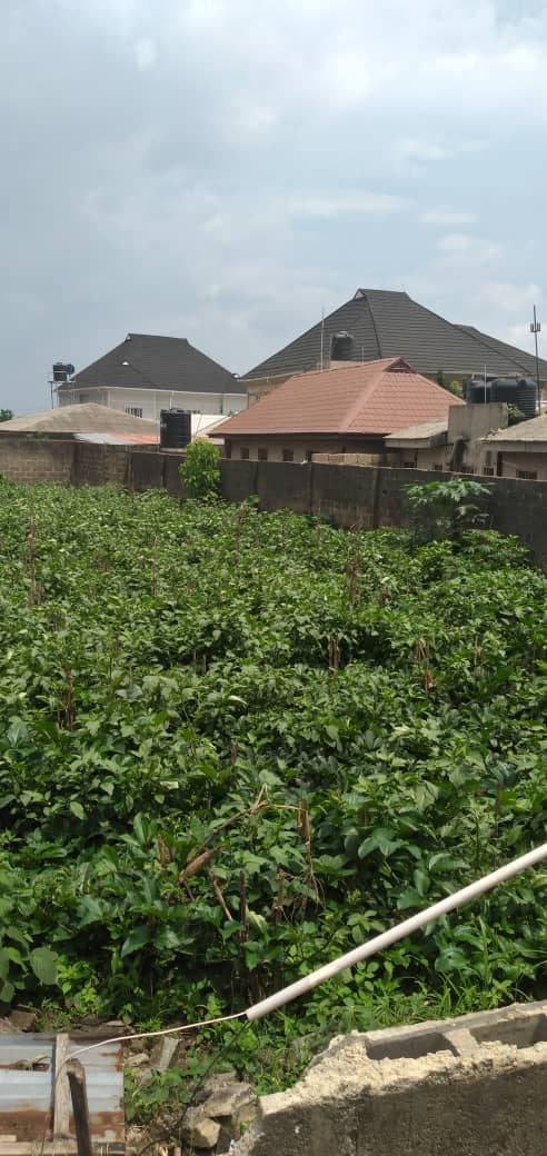 Two fenced plots of lands beside Laspotech main campus, Ikorodu for sale