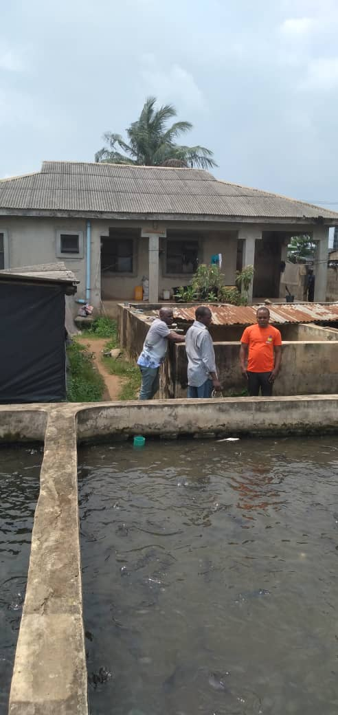 A fish farm and a 3 bedroom house on a plot of land , beside Laspotech main campus, , Ikorodu for sale
