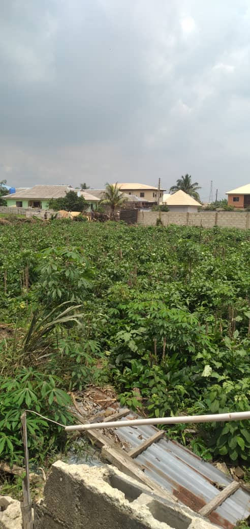 1500sqm of land facing Lekki – Epe expressway at Abijo for sale
