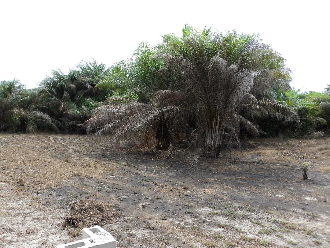 2 Plots of land at Abijo facing Lekki – Epe expressway for sale